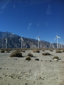Tons of windmills power the Coachella Valley